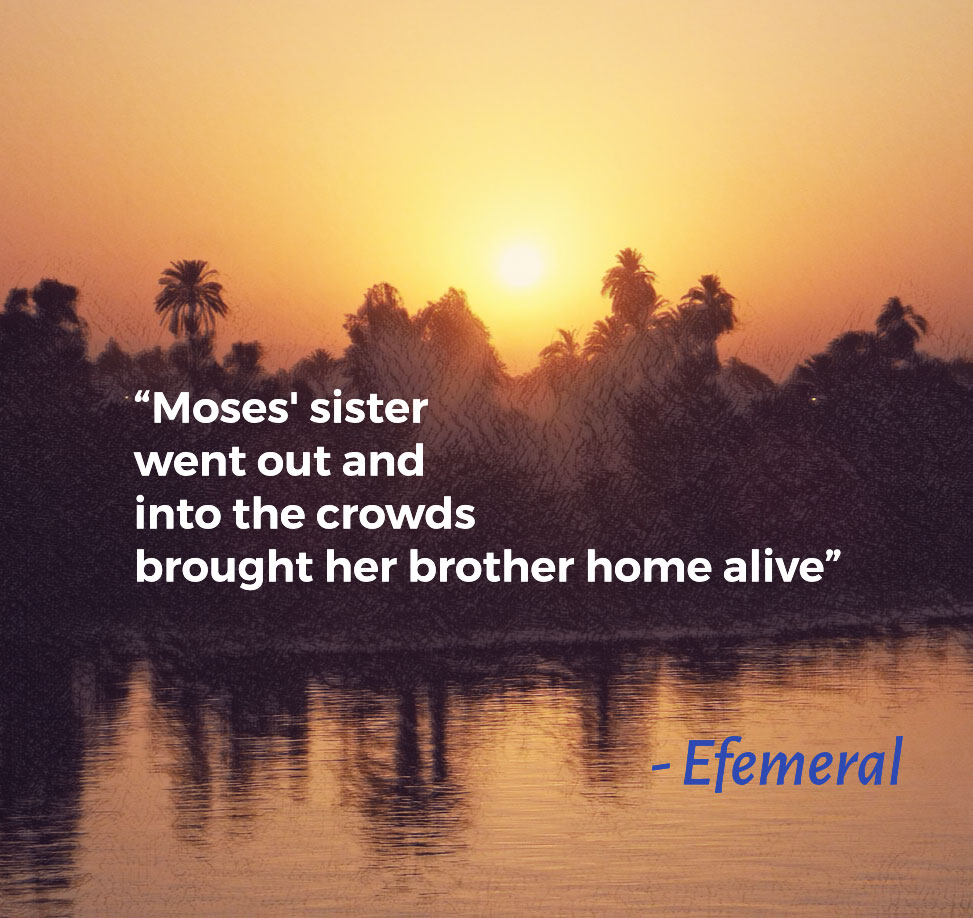 Zaghareet – Efemeral