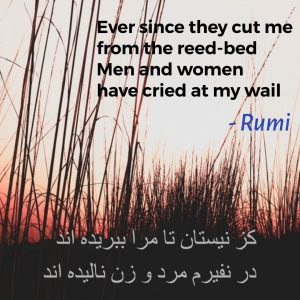 Ever since they cut me from the reed-bed – Rumi