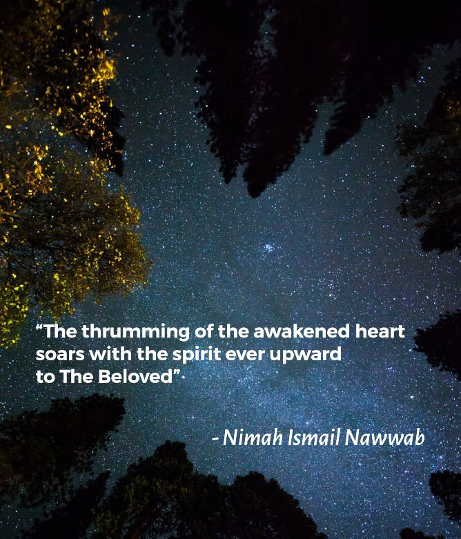 The Night of Salvation – Nimah Ismail Nawwab