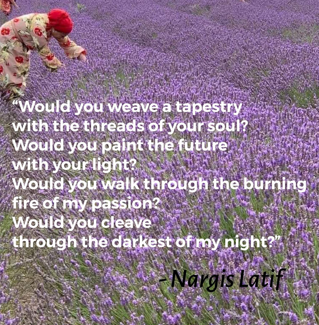 Would You? – Nargis Latif