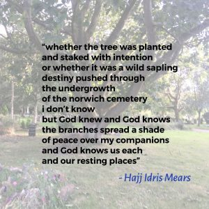 guardian trees – Hajj Idris Mears